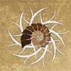 RonIbiza Icon