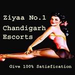 Ziyaa Chandigarh Icon
