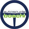 Boschi driving school Icon