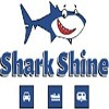 Shark Shine Icon