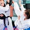 TMD Martial Arts Icon