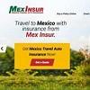 Mex Insur Icon
