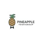 Pineapple Tour Group Icon