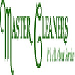 Master Cleaners Icon