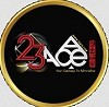 23ACESG.COM Icon