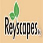 Reyscapes