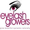 Beautiful Eyelashes Review Icon
