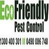 Ant Pest Control Perth Icon