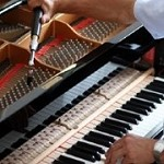 Quality Piano Instruction With Dr Ann Icon