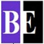 Business Environments LLC Icon