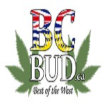 Bcbudca Icon