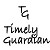 Timely Guardian Icon