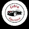 Cobra Experience Cape Town  Icon