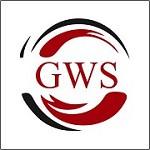 GWS SURGICALS LLP Icon