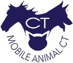 Mobile Animal CT Icon