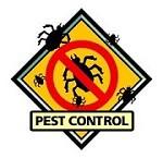 5 Star Pest Control & Bed Bug Exterminators LLC Icon