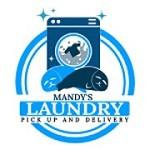 Mandy's Laundry Icon