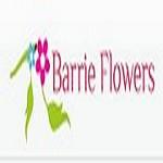 Brook's flowers Icon