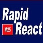Rapid React LTD Icon
