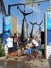Puerto Vallarta fishing report Icon