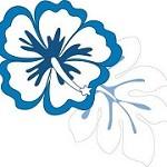 Aloha Print Group Icon