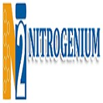Nitrogenium Innovations & Filteration India Pvt. Ltd. Icon
