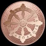 BIOAYURVEDA Icon
