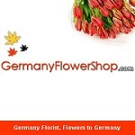 Germany Flowershop Icon
