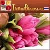 Thailandblooms Icon