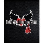iLoveKickboxing - Arlington Icon
