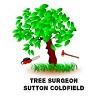 Tree Surgeon Sutton Coldfield Icon
