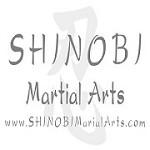 Shinobi Martial Arts Icon