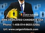 Hire Dedicated Developers & Programmers for Your Business – zaigoinfotech