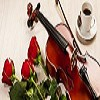 Violin Lessons Singapore Icon