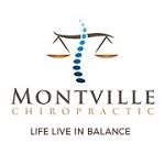 Montville Chiropractic Icon