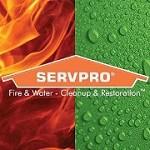 SERVPRO® of Hendricks County Icon