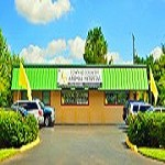 Town & Country Animal Hospital Icon