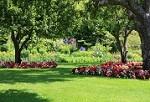 Cruz Lawn and Landscape Icon