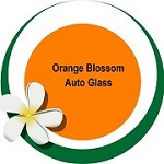 Orange Blossom Auto Glass Icon