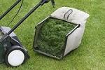 Leander Lawn & Landscape Icon