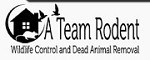 A Team Raccoon, Wildlife Removal, Trapping & Attic Services Icon