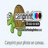Canvas Printing Icon