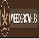 Weed Grow Hub Icon