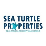 Sea Turtle Properties Icon