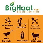 Bighaat Icon