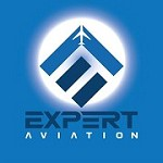 Expert Aviation Icon