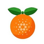 Citrus Pool Icon