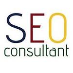 SEO Consultant Mumbai   SEO Freelancer services   Website designing Icon