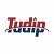 Tudip | IT Services | Digital Transformation | Outsourcing Icon