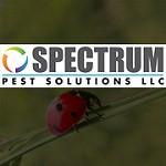 Spectrum pest solutions LLC Icon